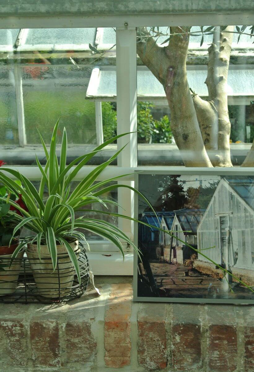 das cafe in der gartenakademie berlin caf s berlin deutschland europa. Black Bedroom Furniture Sets. Home Design Ideas