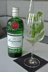 GIN-TONIC-DRINKS-23