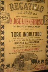 Museo-de-Vinos-y-Torres-0171